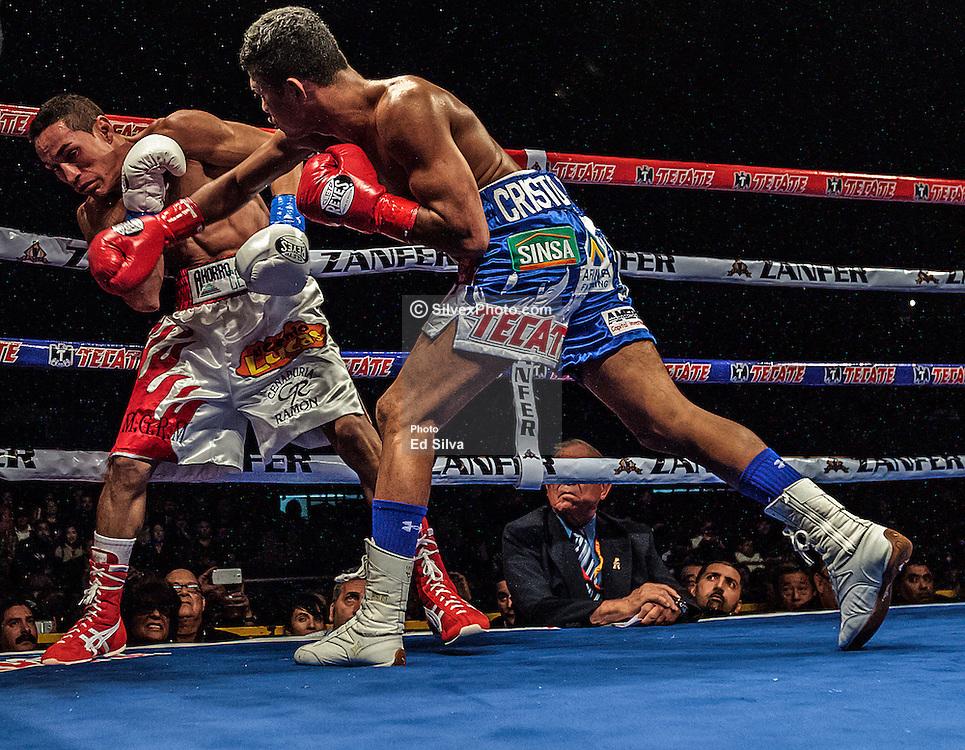 Roman-Gonzalez-vs-Juan-Estrada-at-LA-Sports-Arena-20121117-3513